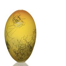 saffron scribe ovoid